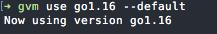 Set GVM Default Go Version to v1.16