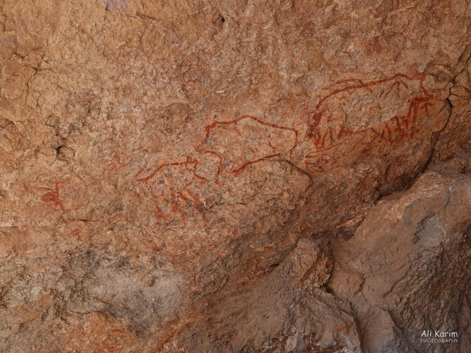 More Murghab & Alichur, Tajikistan, Petroglyphs at Shakhty cave; these were better preserved than other paintings
