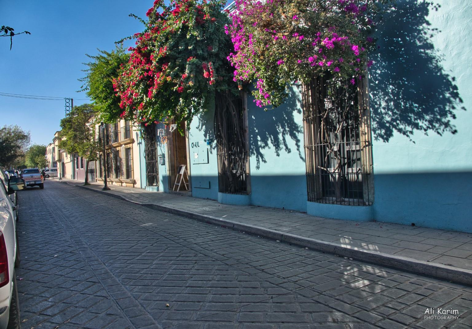 Oaxaca, Mexico Clean streets and sidewalks, with colorful bougainvillea's