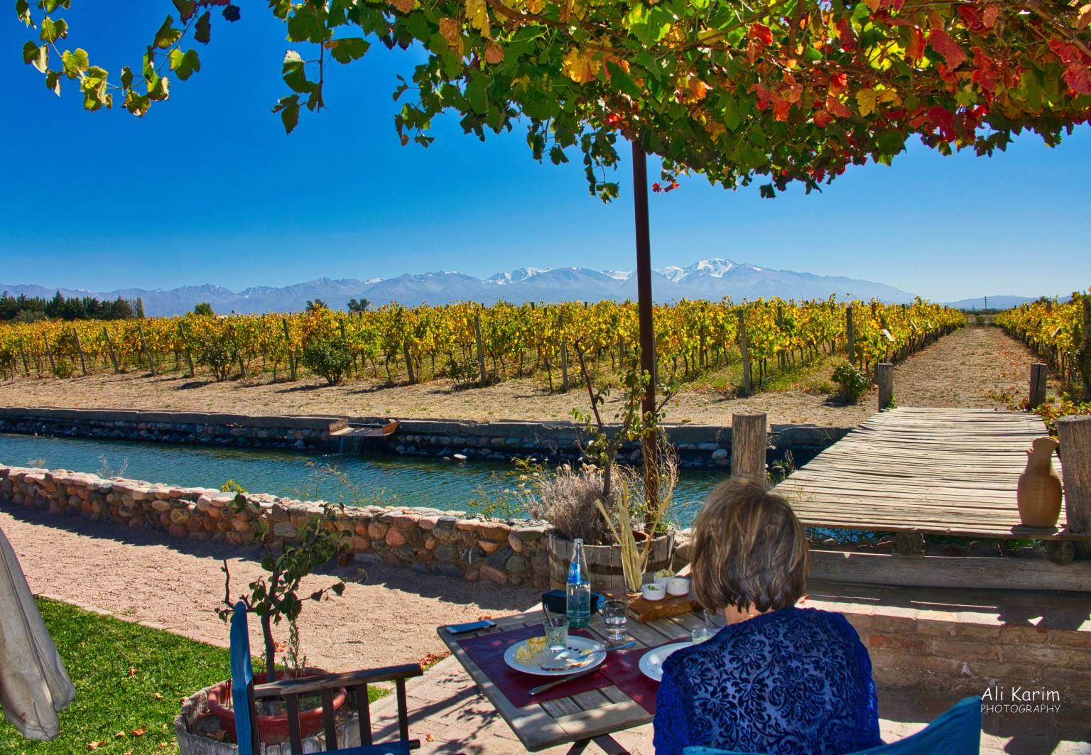 Mendoza, Argentina Beautiful restaurant location amongst wineries with a backdrop of the snowcapped Andes
