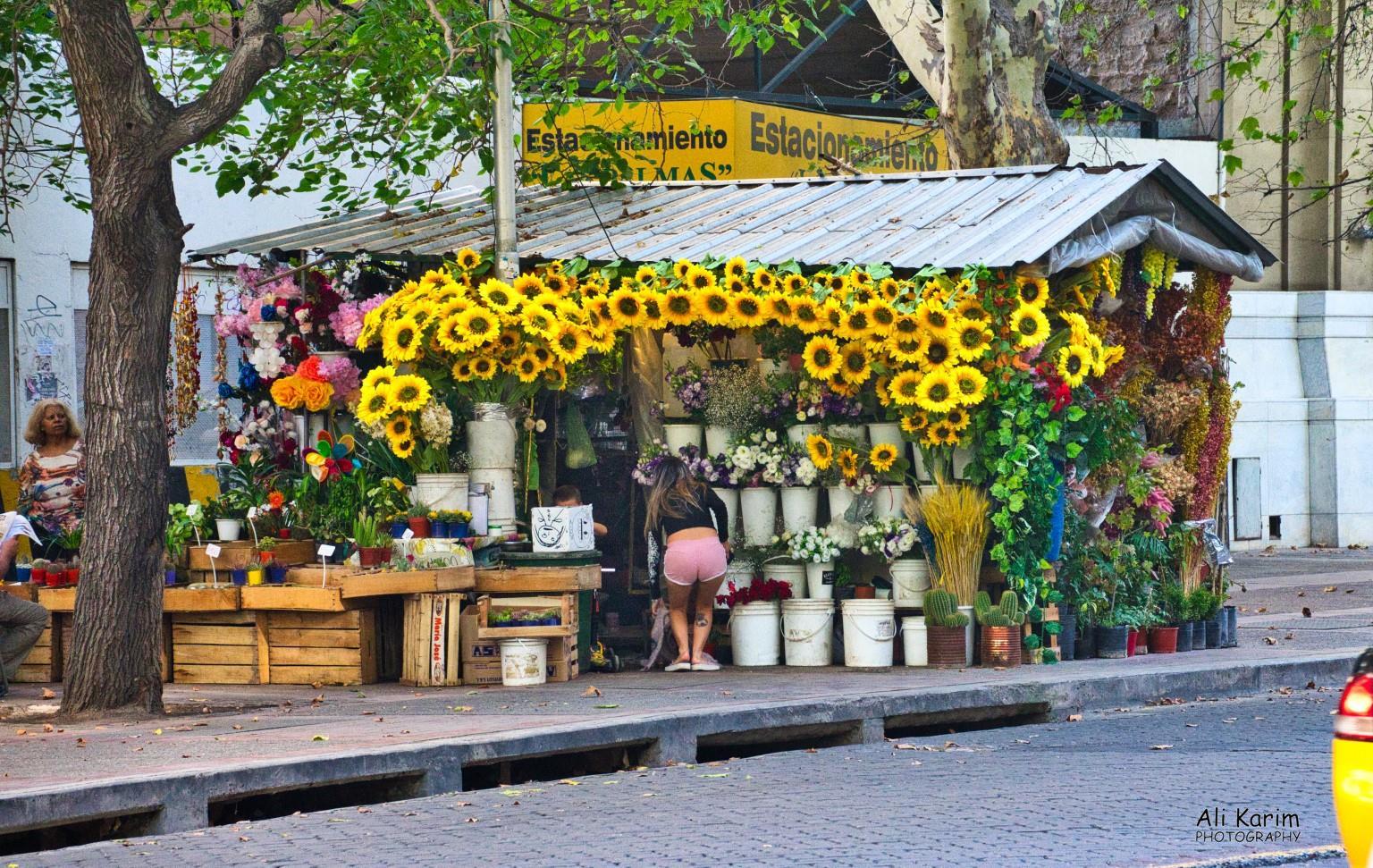 Mendoza, Argentina Flower shop
