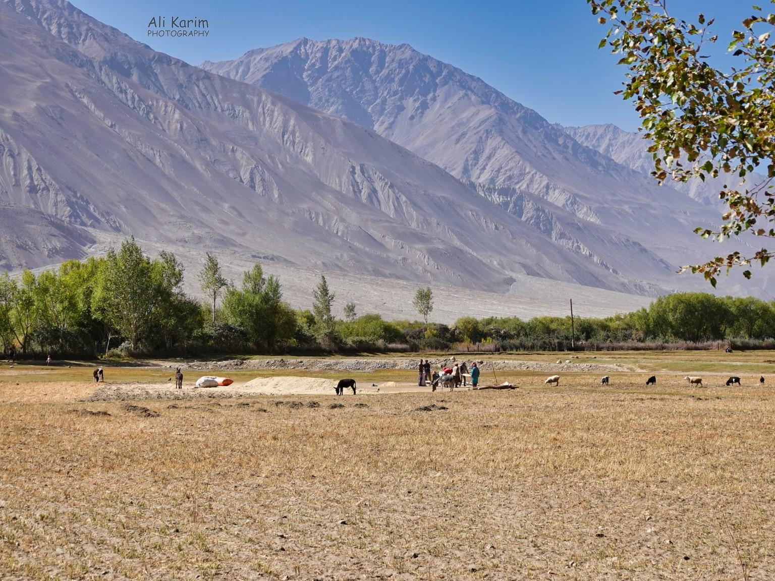 Langar, Bulunkul Tajikistan, Harvest time, with majestic mountains in the back