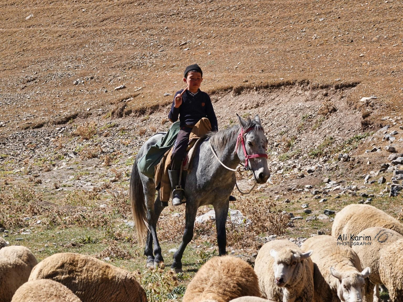 Silk Road 16: More Osh, Kyrgyzstan Young nomad herders