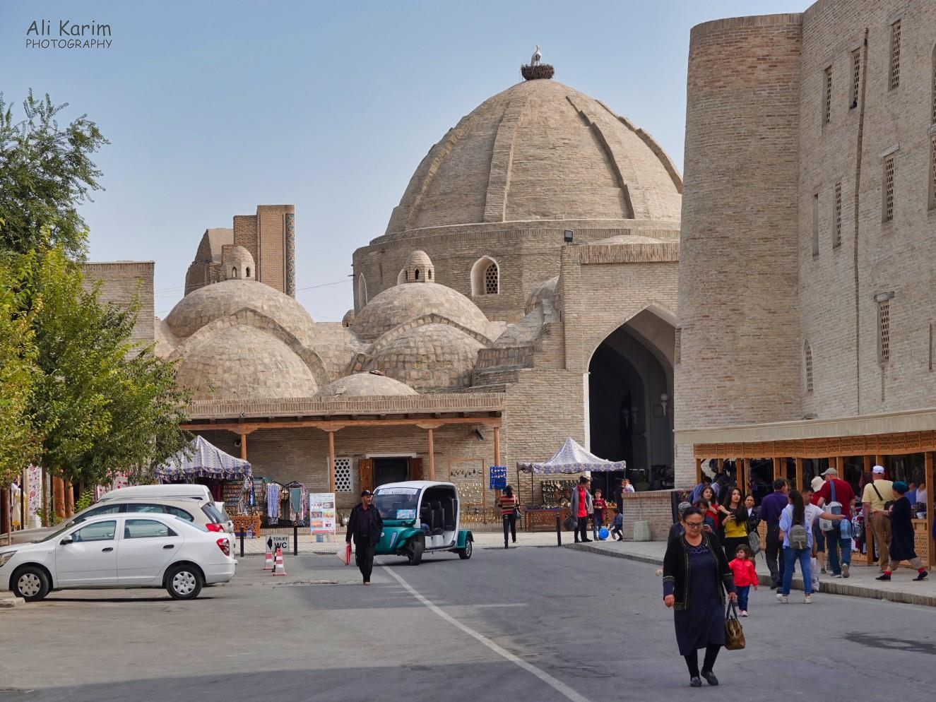 """Bukhara, Oct 2019, """"Trading domes"""" one of several here, were actually used for trading, during the Silk Road times. Note the nest and birds on top of the largest dome; this was a consistent theme"""