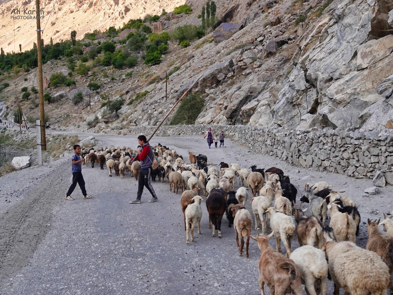 Dushanbe, Tajikistan Traffic Jams along M41 Pamir Highway