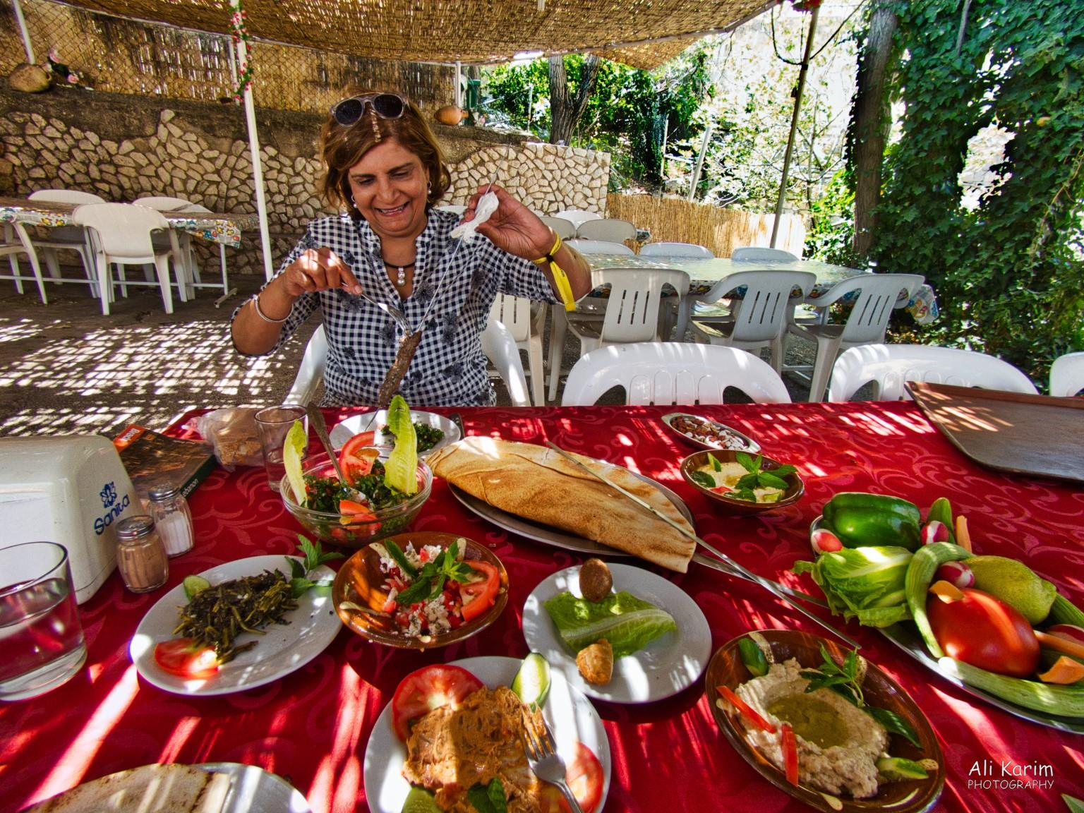 Bekaa Valley Winery, Chouf Mountains & the Druze 4 sticks of Kebabs and pita bread followed