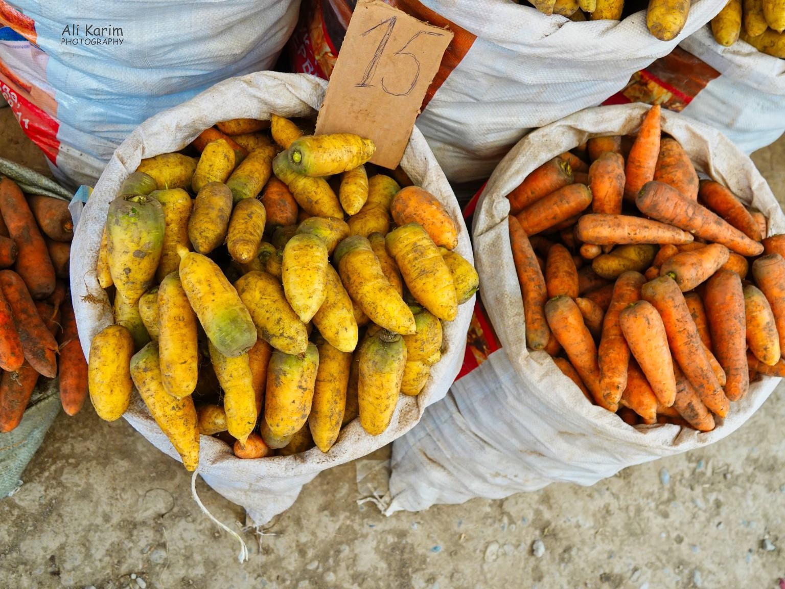 Silk Road 15: Osh, Kyrgyzstan Orange and Yellow Carrots