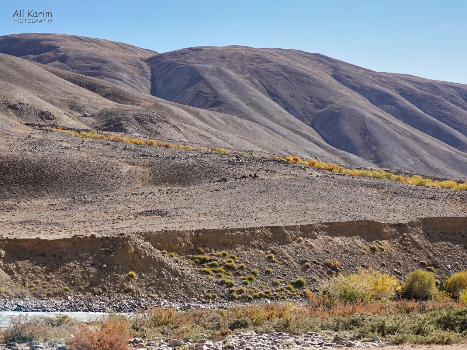 Langar, Tajikistan, Horse caravan perspective