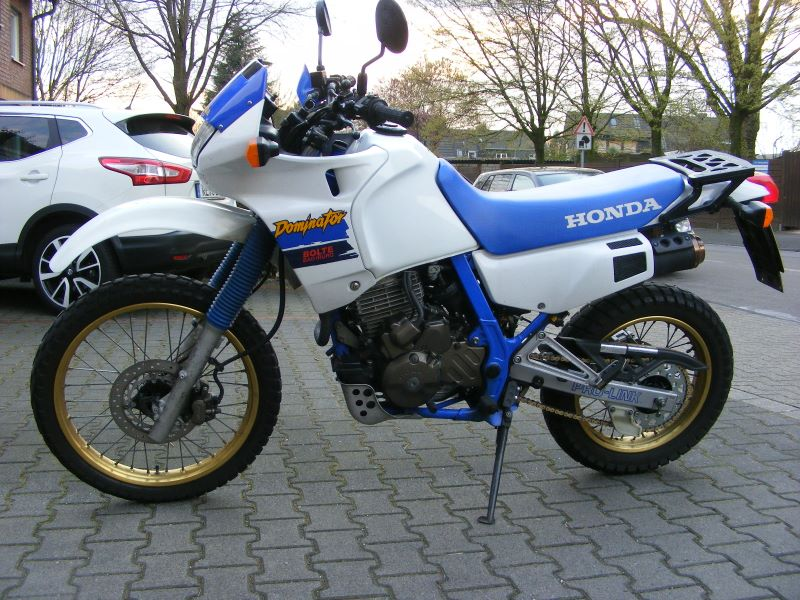 dieter-NX650.jpg?dl=0