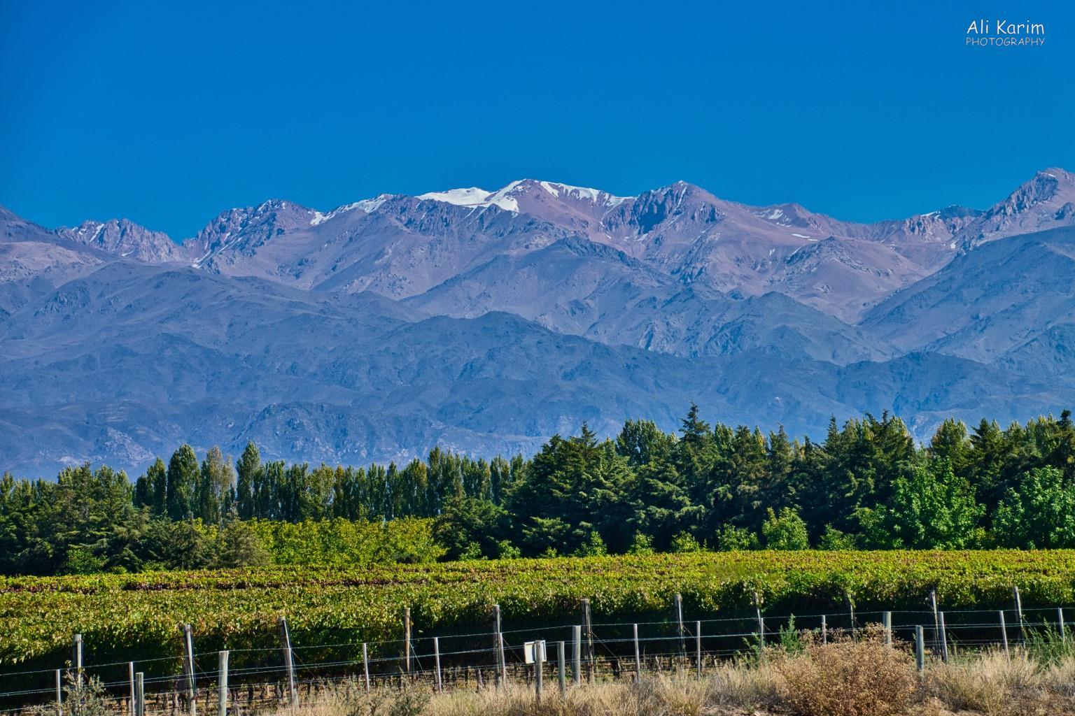 Mendoza, Argentina Amazing views in Tupungato wine route
