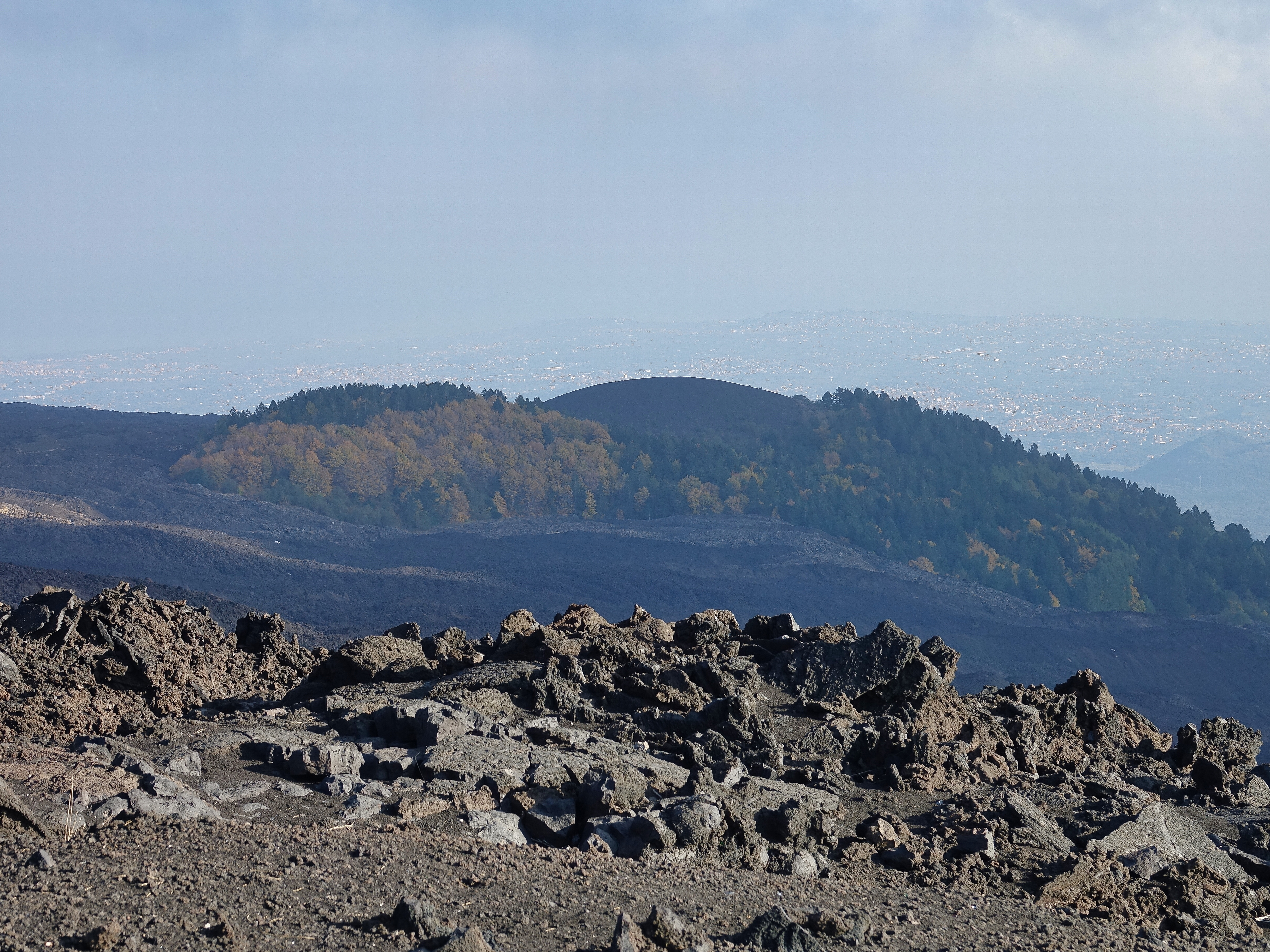 View from Mt Etna, barren lava rock and the occasional small forest
