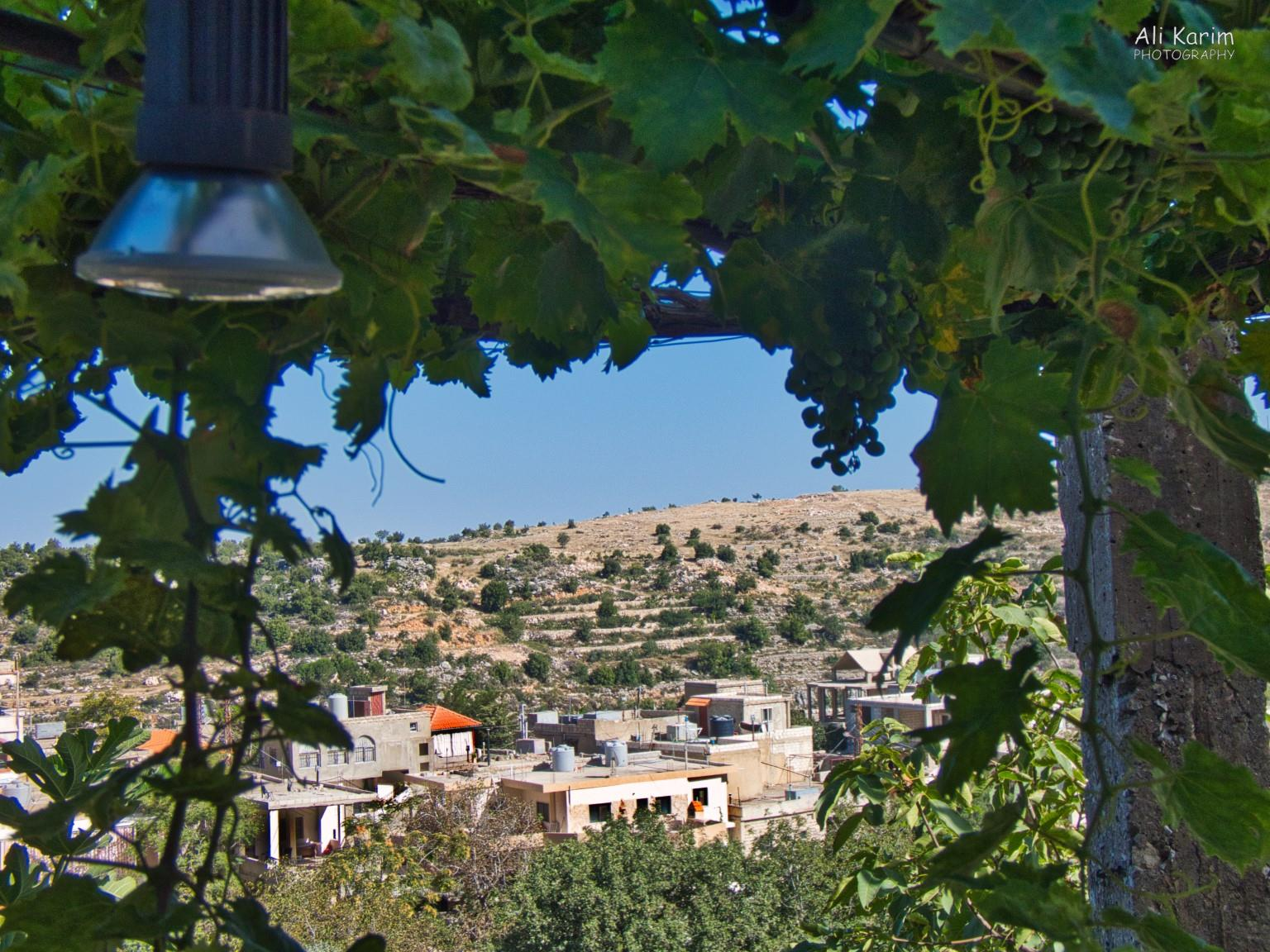 Bekaa Valley Winery, Chouf Mountains & the Druze View from our bedroom