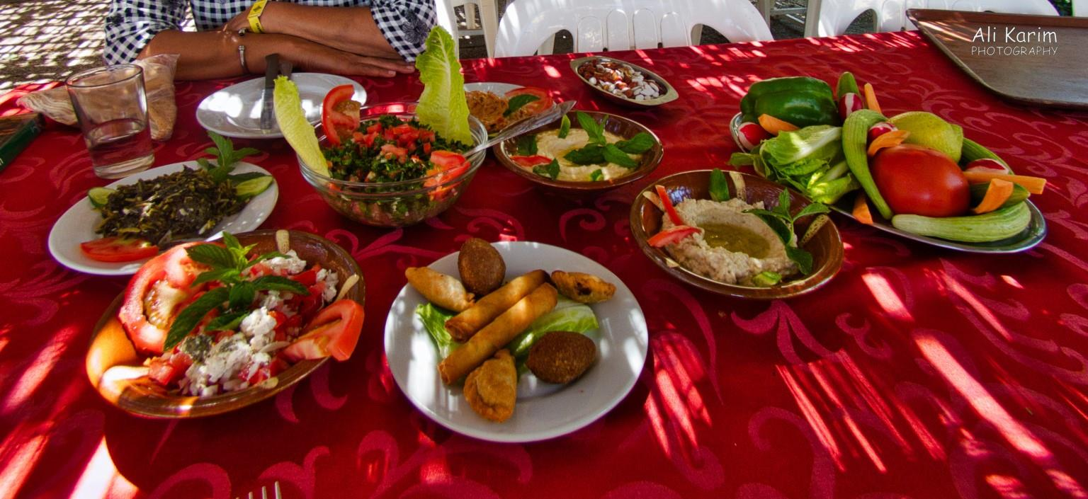 Bekaa Valley Winery, Chouf Mountains & the Druze Meze of dishes; fresh salad, humus, kibbek, tabouli, tahini, nuts, snack that was fried and another dish we had no idea what it was