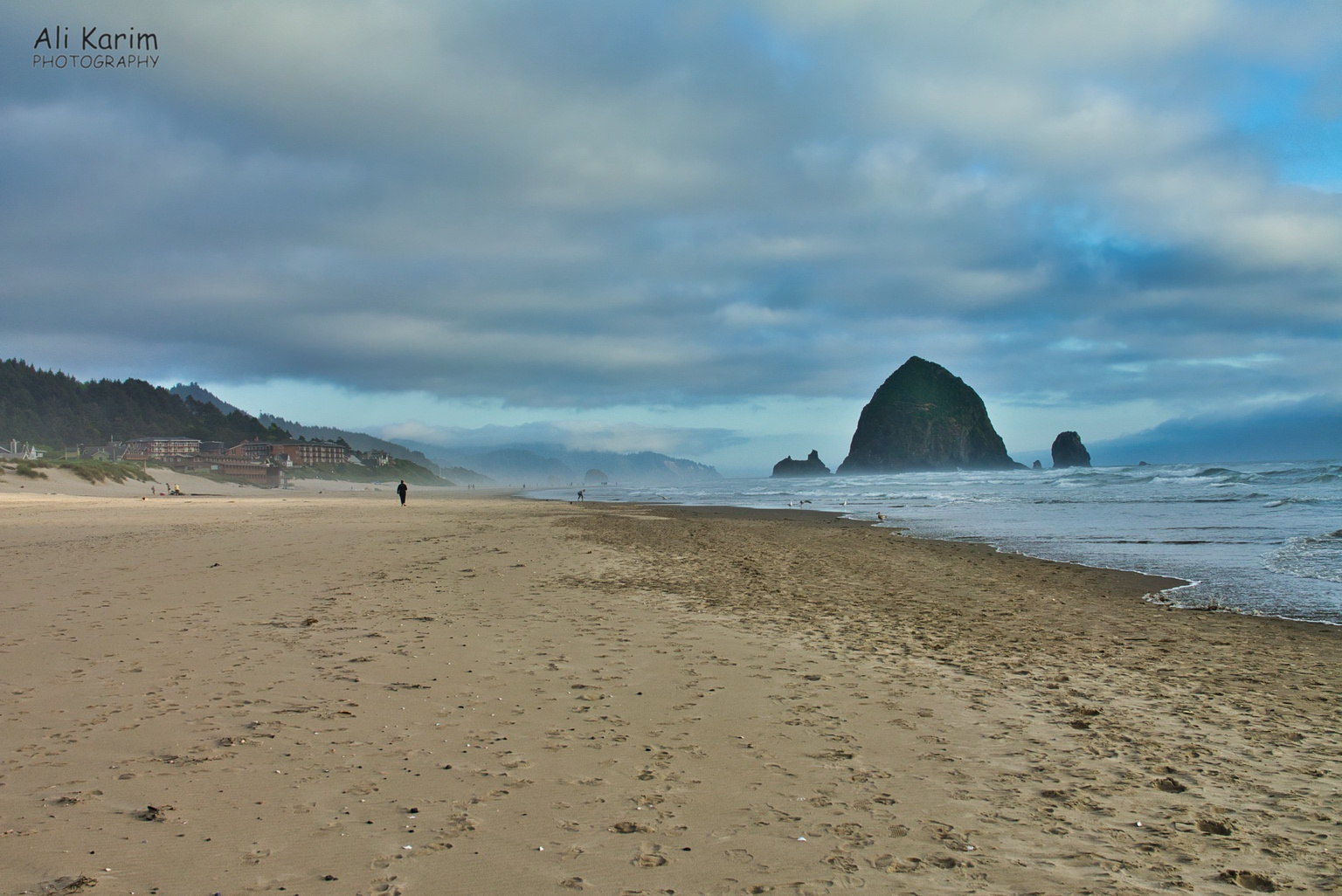 Oregon Coast Hwy 101 Haystack Rock at Cannon Beach