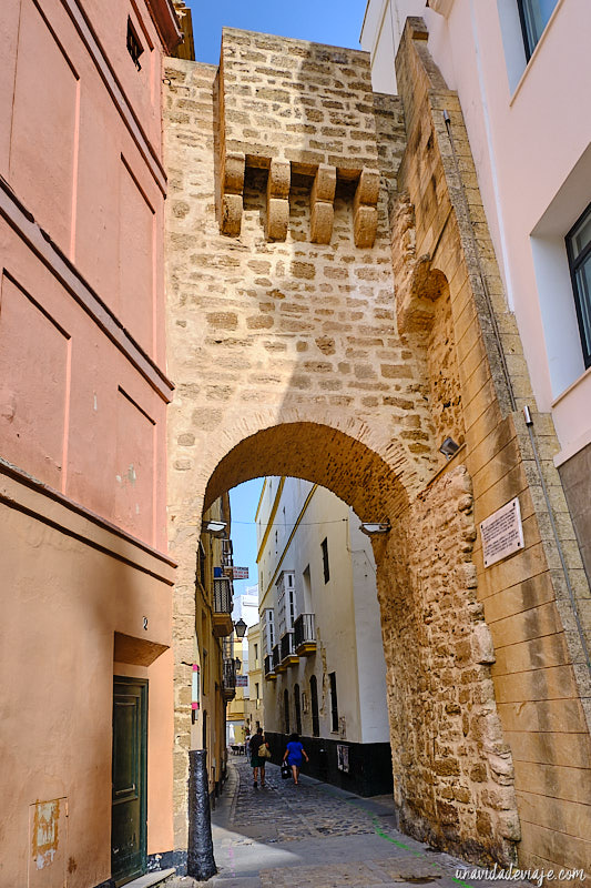 que ver en Cádiz en 1 día