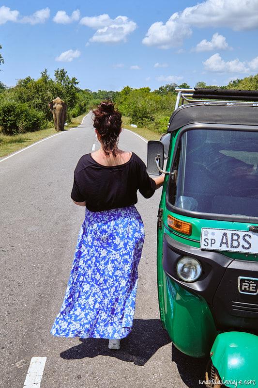 alquilar tuk tuk en Sri Lanka